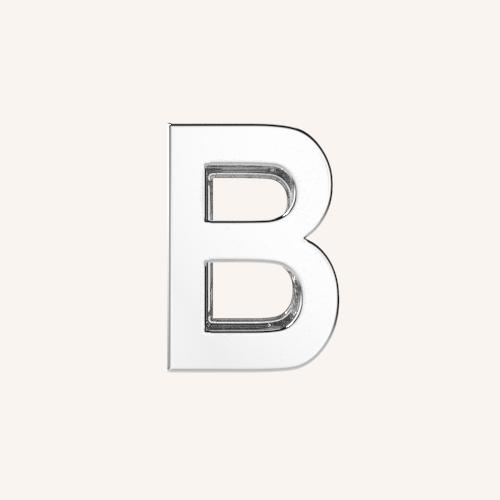 B Charm